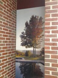 Outdoor Wall Graphics